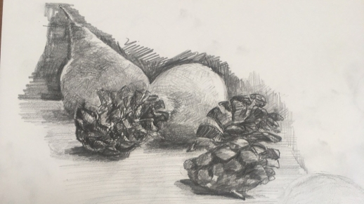 Pine cones, lemon and pear still life JoLB demo